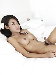 21yo Busty Thai Ladyboy With Big Cock Jerks Off On Her Own Hands