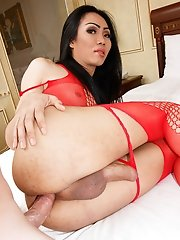Ladyboy Swan - Red Body Stocking Versatile Bareback